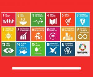 17 obiettivi agenda 2030